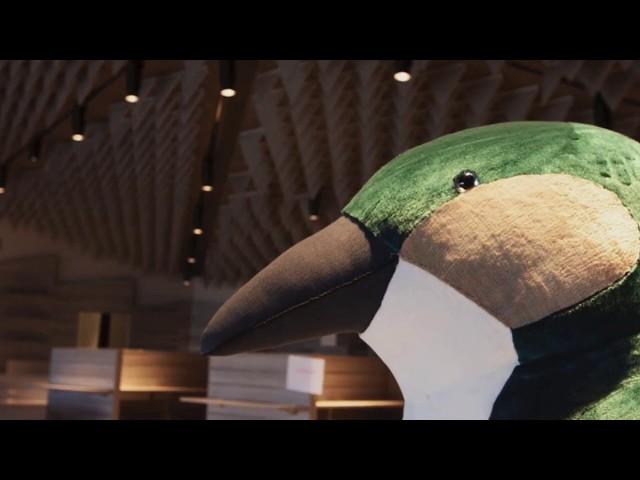Penguin Parade Visitors Centre