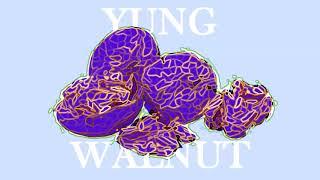 yung walnut - neon exodus evangelion