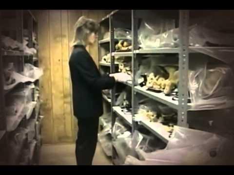 Mutter Museum Documentary │ Full video │