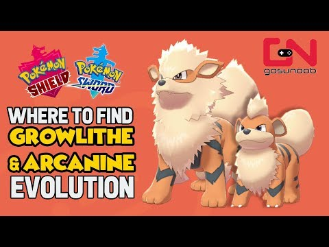 Where to find Growlithe - How to Evolve into Arcanine - Pokemon Sword and Shield Evolution
