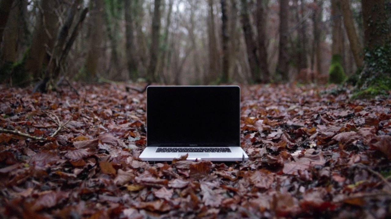 The Other People Place • 'Lifestyles Of The Laptop Café ...