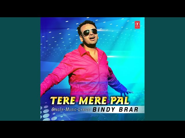 Tere Mere Pal