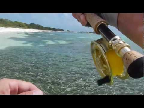 Fly fishing Los Roques 2013
