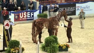 Joey - War Horse