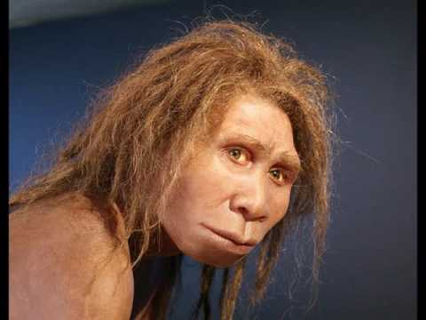 Human Pre-History: Part One- From Ape to Man