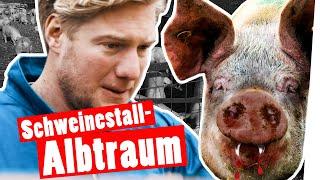 Bestrafung: Marc kriegt Panik im Schweinestall    Das schaffst du nie!