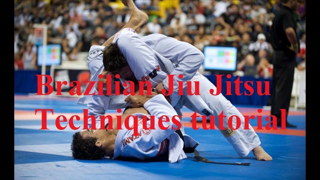 brazilian jiu jitsu self defense techniques pdf