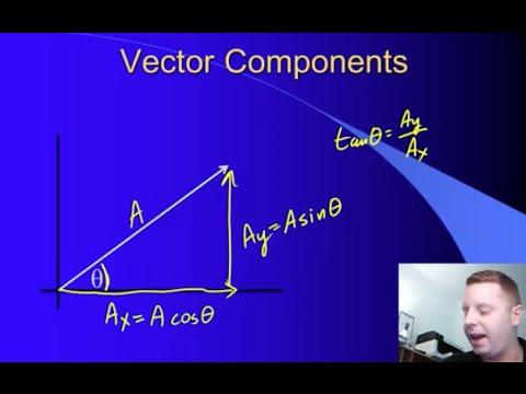 High School Physics: Vectors and Scalars