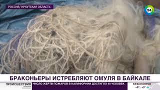 Богатства Байкала: от омуля до золота Колчака - МИР24