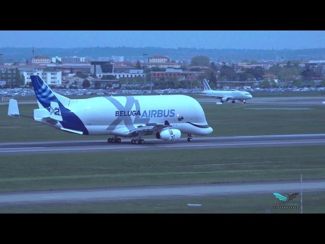 Maiden Flight Airbus BelugaXL