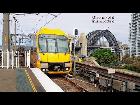 Sydney Trains Vlog 1456: Milsons Point Trainspotting