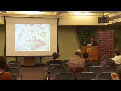 William Sewell: The Ecology of Firms in the Eighteenth-Century Lyonnais Silk Industry
