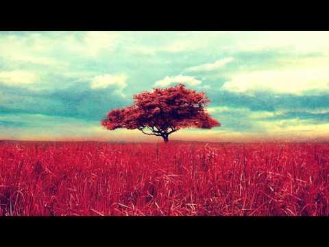 [1 Hour] Healing Tambura - Root Chakra Meditation Music    Taanpura Sounds