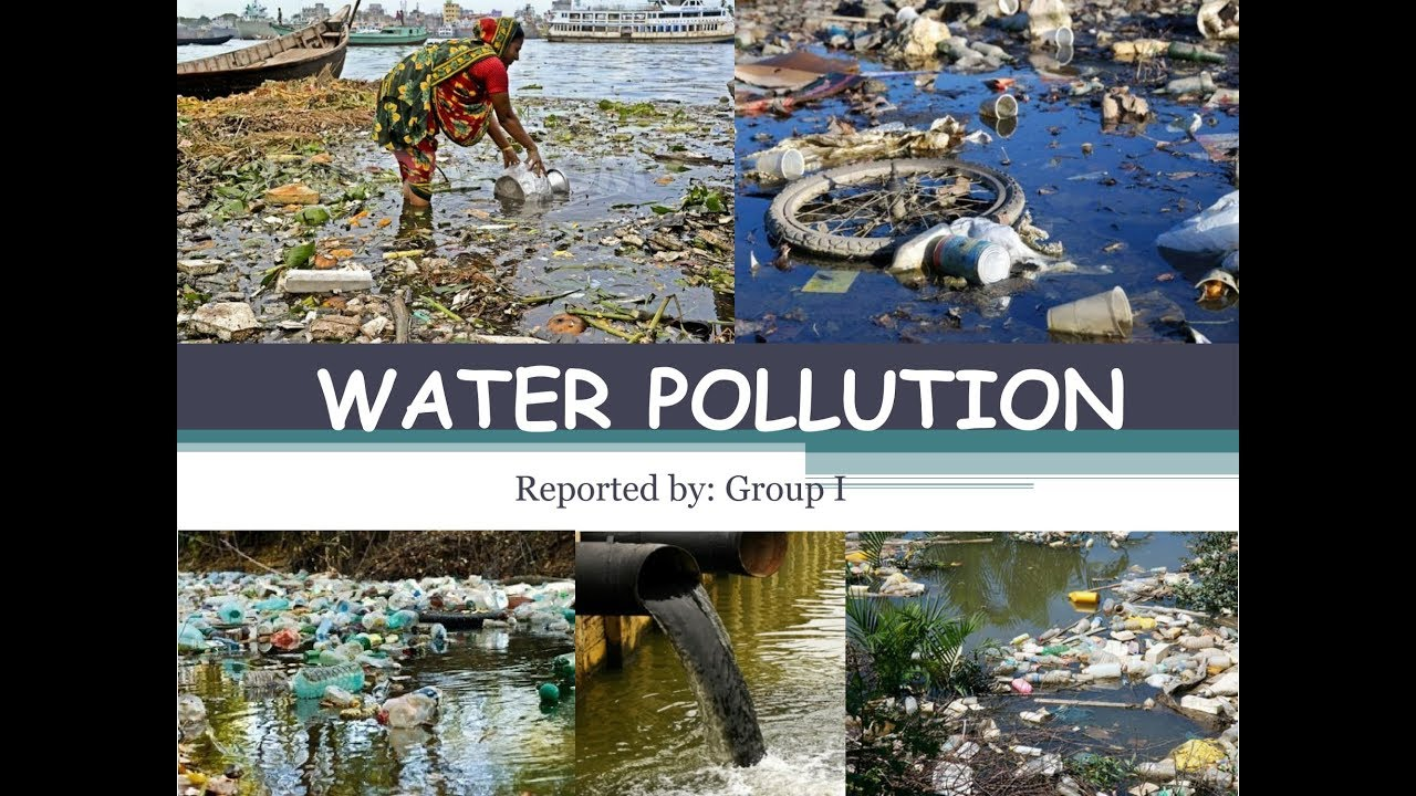 causes of water pollution A new report from the environmental working group reveals that the us  department of agriculture is failing to enforce a key farm bill provision.