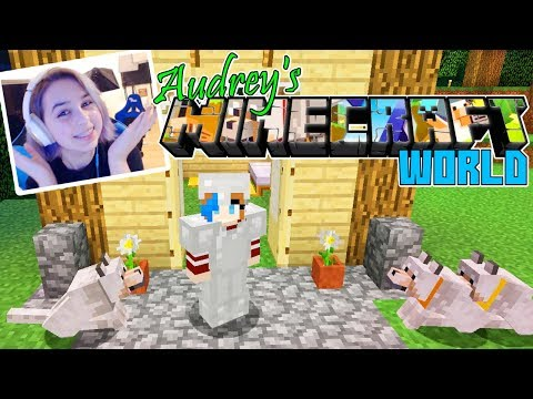 Audrey's World in MINECRAFT SURVIVAL | Name My Dogs!
