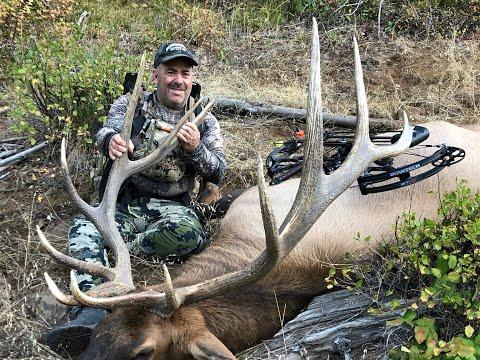 Oregon, Wenaha, Archery Elk Hunt 2019