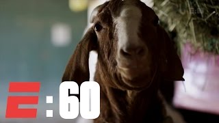 The Derby Horses And Their Barnyard Buddies | E:60 | ESPN Archives