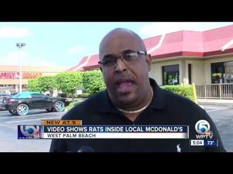 Video Shows Rats Inside Local McDonald's