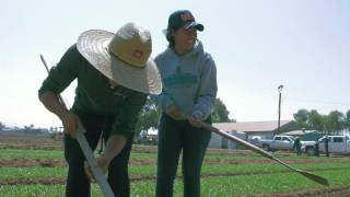 Salinas Valley Dream Academy - A Day In The Fields