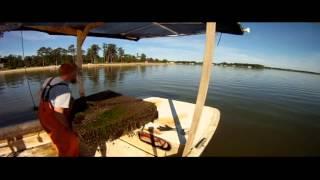 THE OYSTER FARM   SUMMER 2013 (HD)