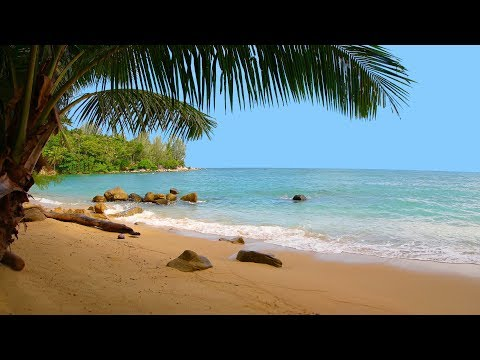 Relaxing Happy Music - Ethnic Flute, Peruvian Instruments - Relax Beach Video