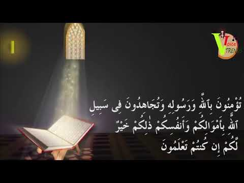 new-quran-recitation-really-beautiful-amazing-2019