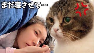 何度でも二度寝するママVS絶対に起こす猫
