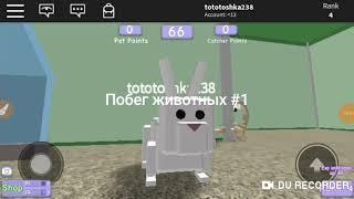 Побег животных #1 | Roblox