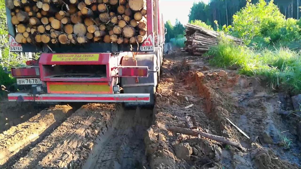 Лесовозы в делянке 2
