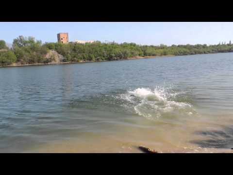 видео: С Разгону в речку ласточкой
