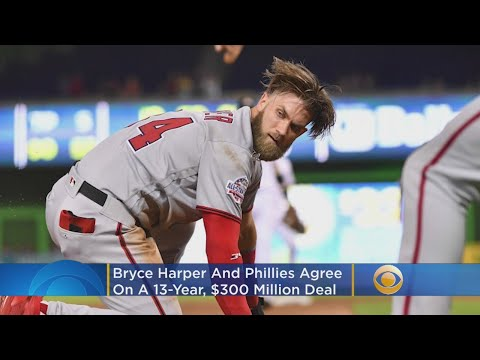 Bryce Harper Signs 13 Year Contract With Phillies – Local News Alerts
