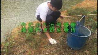 14岁小六土法钓鱼,没想到竟钓上了一条会叫的鱼,整个人激动坏了