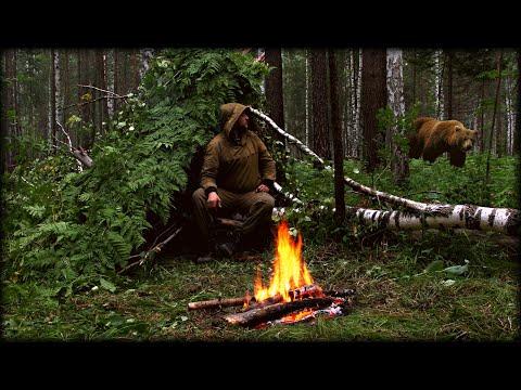 Выживание с Медведями! Ночёвка в мокром лесу. Без снаряжения 24 часа