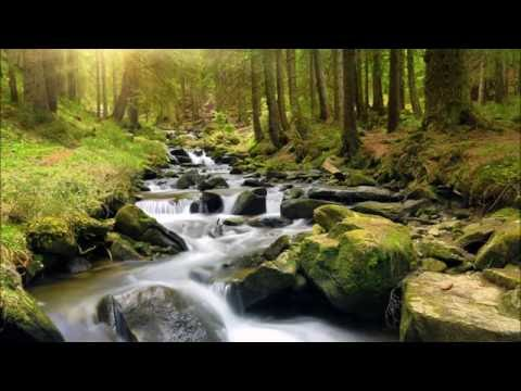 2 Hours Nonstop Relaxing & Healing Music - with emotional and inspiring Images in Background