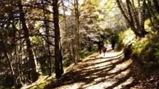 مزمور  121... رفعت عيني الى الجبال
