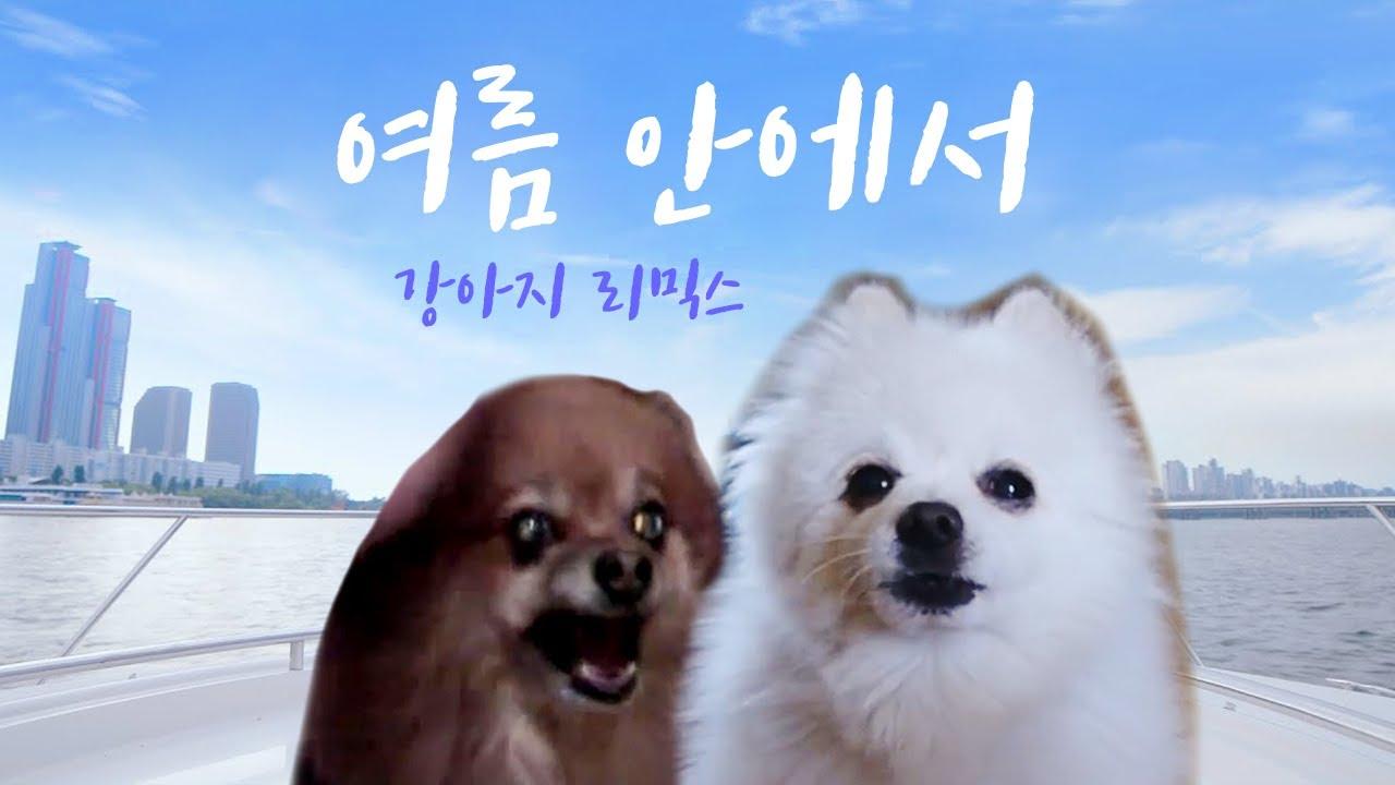 싹쓰리(SSAK3) - 여름 안에서 강아지 리믹스 (듀스 여름안에서)
