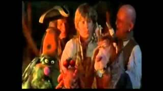 Muppet Treasure Island  Professional Pirate