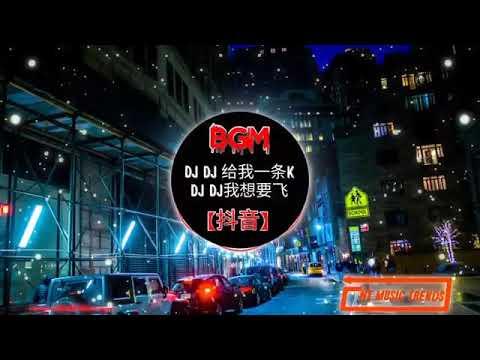 Download ☆DJ_WH☆《超爆红》(2020年最新歌曲)DJDJ给我一条K🔥DJ REMIX🔥