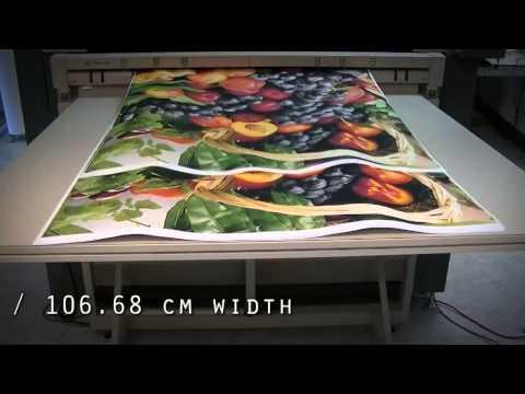 Vortex 4200 Graphics