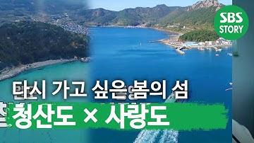 다시 가보고 싶은 봄의 섬 '청산도×사랑도'ㅣ생방송 투데이(Live Today)ㅣSBS Story