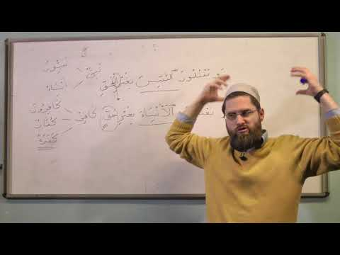 The Difference Between the Broken Plural and the Sound Plural in the Quran