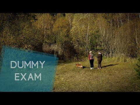 Dummy A exam | Cuba´s Libre
