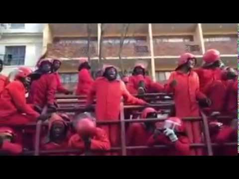 Red Ants arrive at Jhb eviction chanting and enticing the distraught crowds