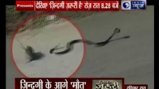 India News special show 'Zindagi Zaruri Hai' on struggle of life