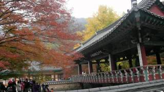 韓國內藏山之旅.avi