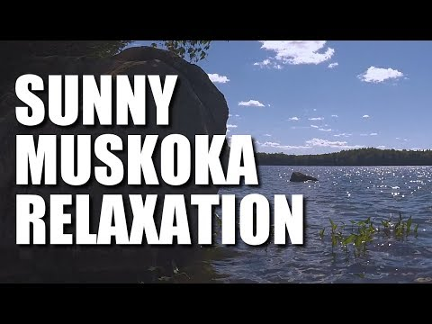 4 Hours On a Muskoka Lake - Relaxing Nature Sounds - Canada