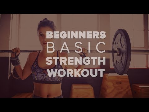 The Beginner's Basic Strength Workout At The Gym