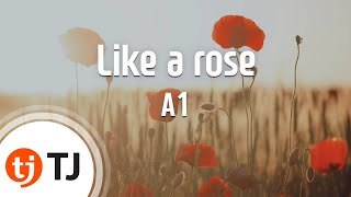 [TJ노래방] Like a rose - A1 (Like a rose - A1) / TJ Karaoke
