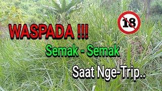 Video (18+) Bahaya !!! Kelakuan Remaja Jaman Sekarang... download MP3, 3GP, MP4, WEBM, AVI, FLV Oktober 2017