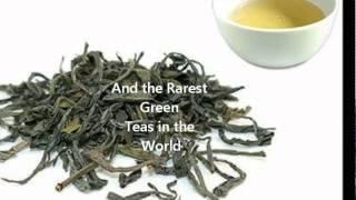 Azores Tea Plantation in Europe